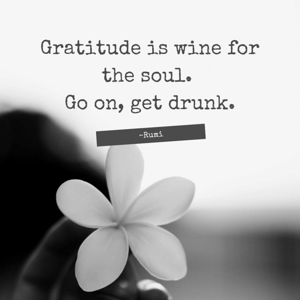 Gratitude is wine for the soul. Go on, get drunk. -Rumi
