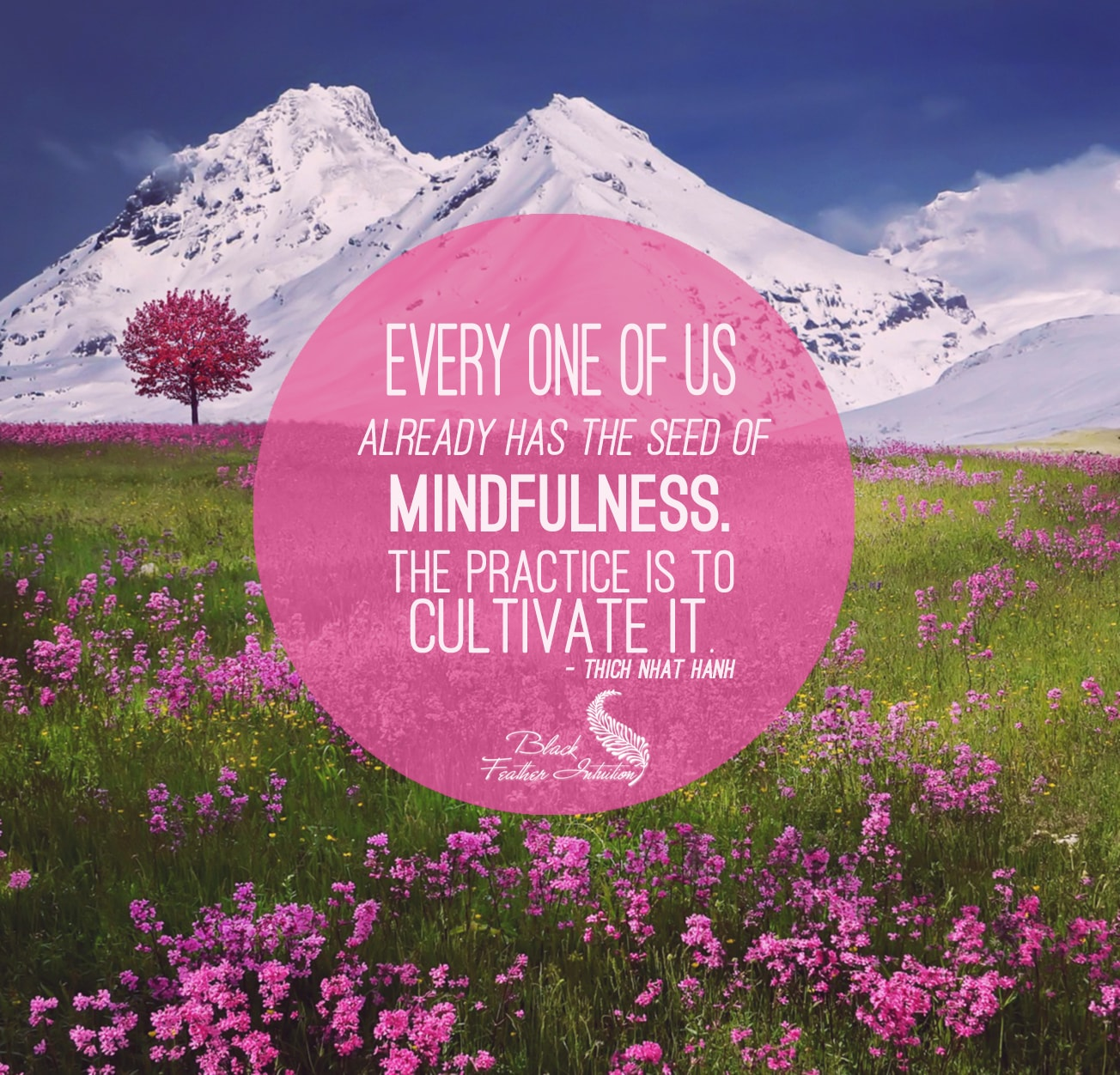 everyone of us already has mindfulness quote - thich nhat hanh